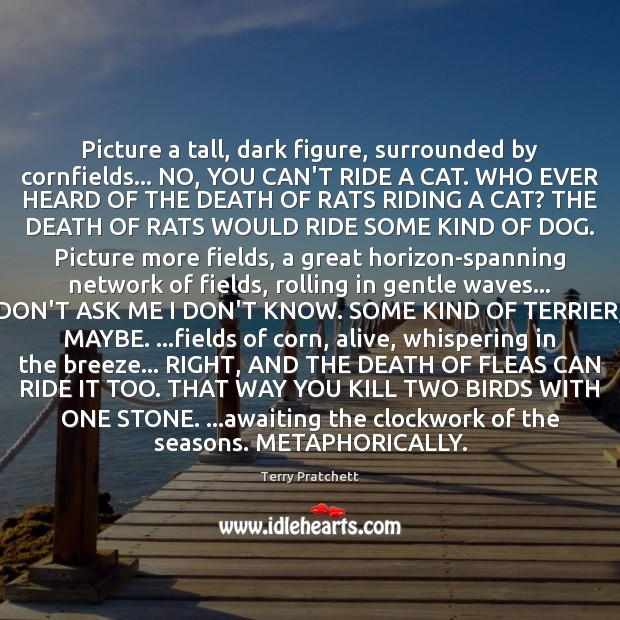 Picture a tall, dark figure, surrounded by cornfields… NO, YOU CAN'T RIDE Terry Pratchett Picture Quote