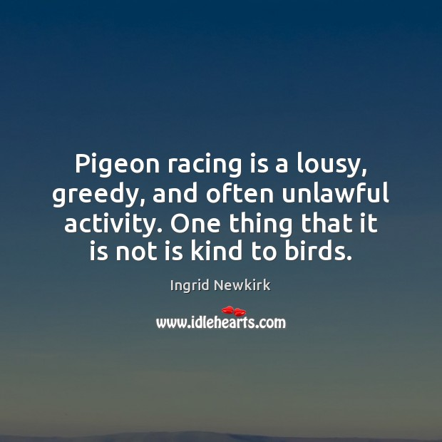 Pigeon racing is a lousy, greedy, and often unlawful activity. One thing Racing Quotes Image