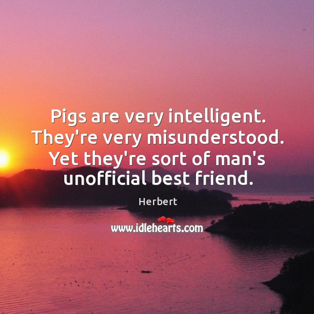 Image, Pigs are very intelligent. They're very misunderstood. Yet they're sort of man's