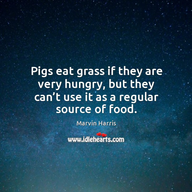 Pigs eat grass if they are very hungry, but they can't use it as a regular source of food. Image