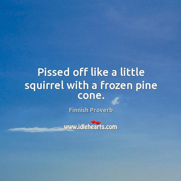 Pissed off like a little squirrel with a frozen pine cone. Finnish Proverbs Image