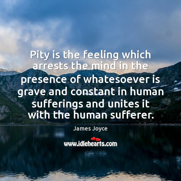 Pity is the feeling which arrests the mind in the presence of Image
