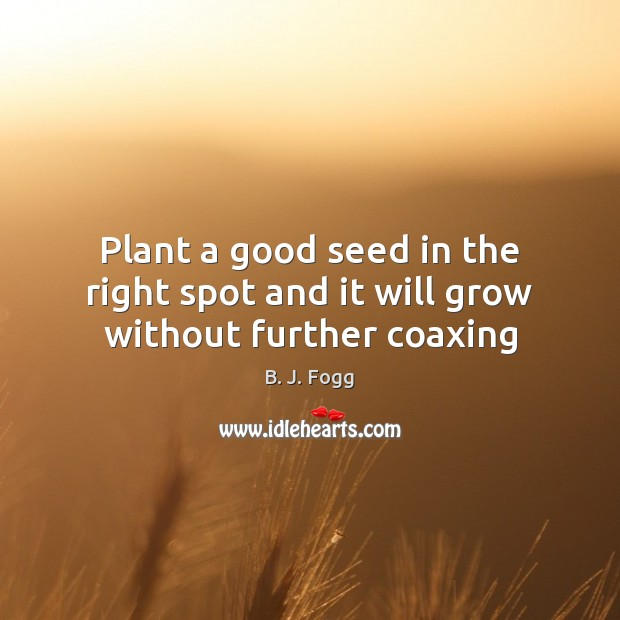 Image, Plant a good seed in the right spot and it will grow without further coaxing