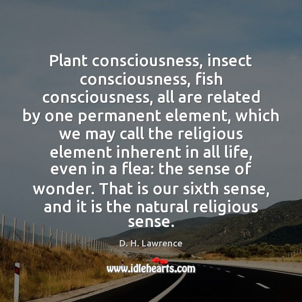 Plant consciousness, insect consciousness, fish consciousness, all are related by one permanent Image