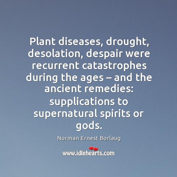 Plant diseases, drought, desolation, despair were recurrent catastrophes during the ages – Image