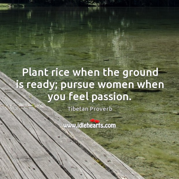 Plant rice when the ground is ready; pursue women when you feel passion. Tibetan Proverbs Image