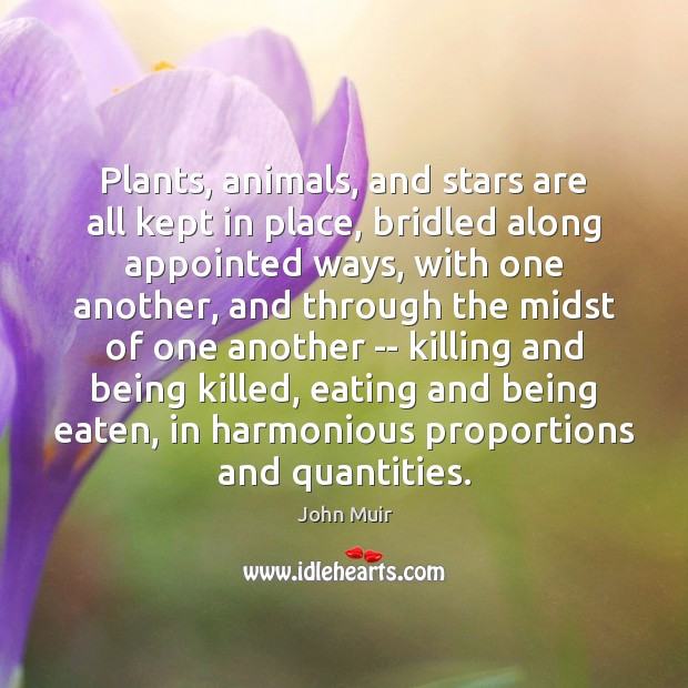 Image, Plants, animals, and stars are all kept in place, bridled along appointed