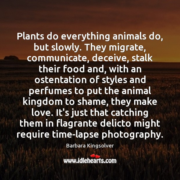 Plants do everything animals do, but slowly. They migrate, communicate, deceive, stalk Image