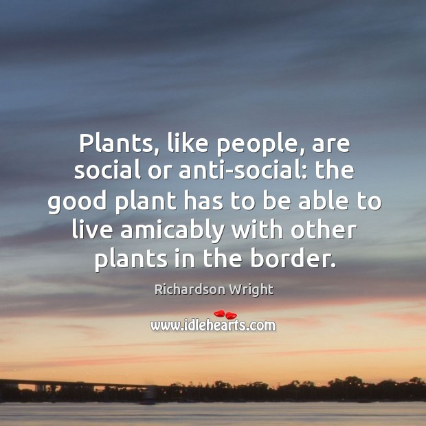 Plants, like people, are social or anti-social: the good plant has to Image