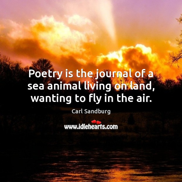Poetry is the journal of a sea animal living on land, wanting to fly in the air. Sea Quotes Image