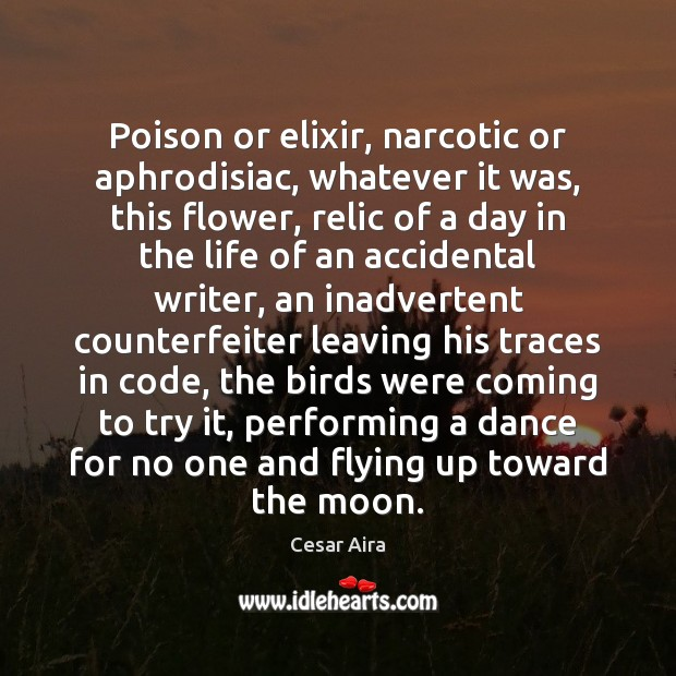 Image, Poison or elixir, narcotic or aphrodisiac, whatever it was, this flower, relic