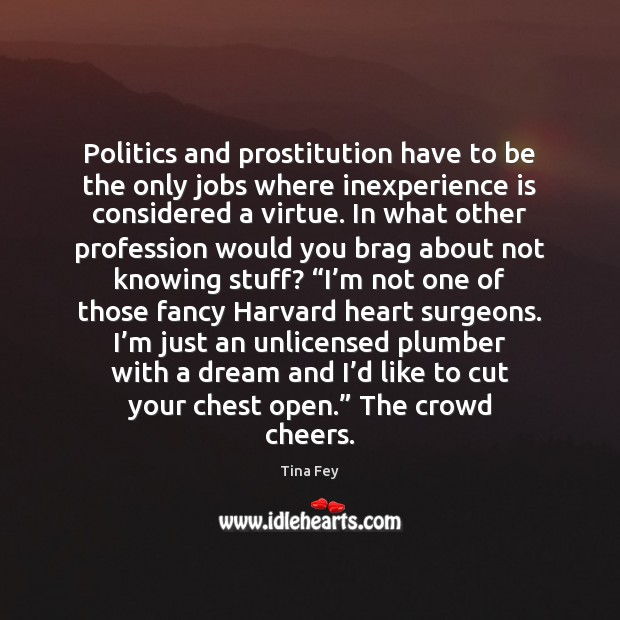 Image, Politics and prostitution have to be the only jobs where inexperience is