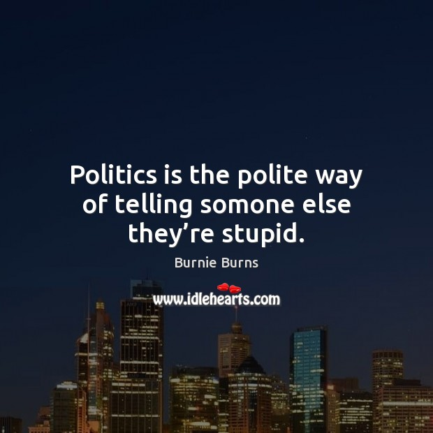 Image, Politics is the polite way of telling somone else they're stupid.