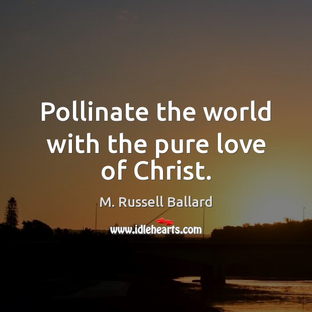 Image, Pollinate the world with the pure love of Christ.