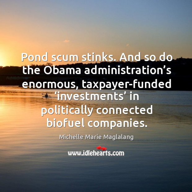 Pond scum stinks. And so do the obama administration's enormous, taxpayer-funded 'investments' in Image