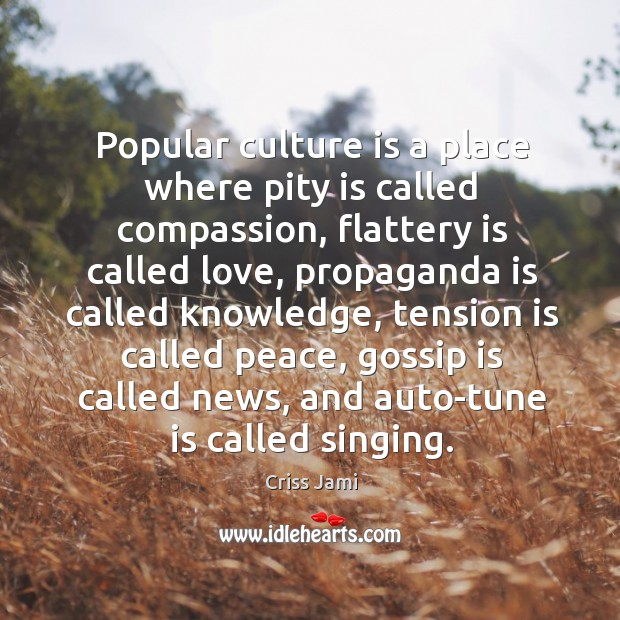 Popular culture is a place where pity is called compassion, flattery is Image
