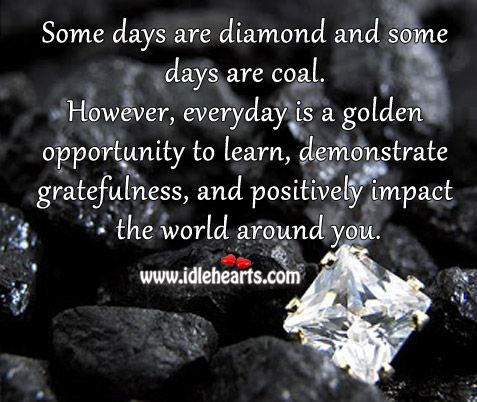 Everyday Is A Golden Opportunity To Learn