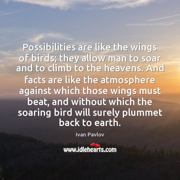 Possibilities are like the wings of birds; they allow man to soar Image