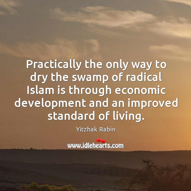 Practically the only way to dry the swamp of radical Islam is through economic development Image