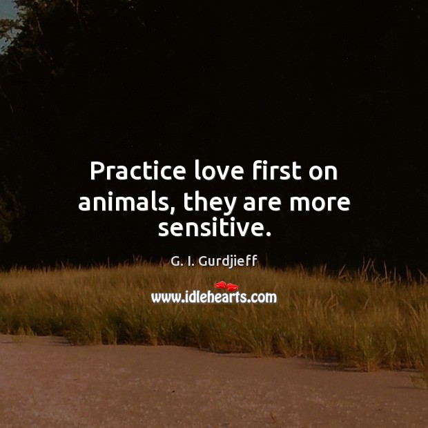 Practice love first on animals, they are more sensitive. G. I. Gurdjieff Picture Quote