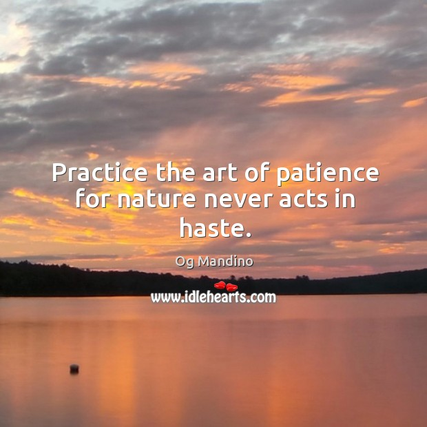 Practice the art of patience for nature never acts in haste. Image