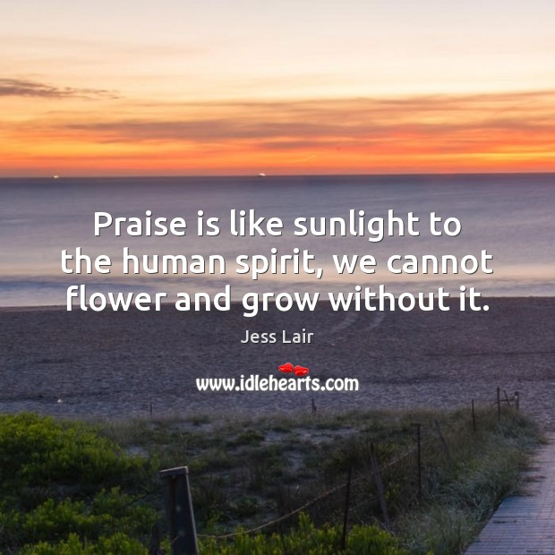 Praise is like sunlight to the human spirit, we cannot flower and grow without it. Jess Lair Picture Quote