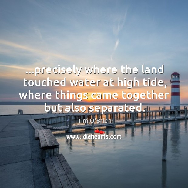 …precisely where the land touched water at high tide, where things came Image