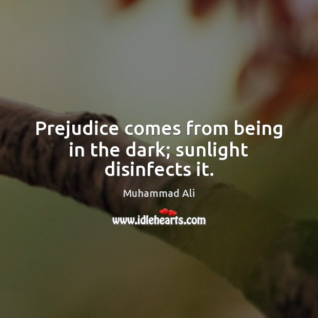 Prejudice comes from being in the dark; sunlight disinfects it. Image