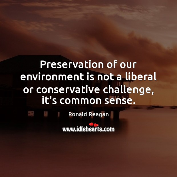 Image, Preservation of our environment is not a liberal or conservative challenge, it's