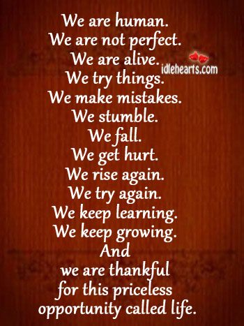 Be thankful for the priceless opportunity called life. Try Again Quotes Image