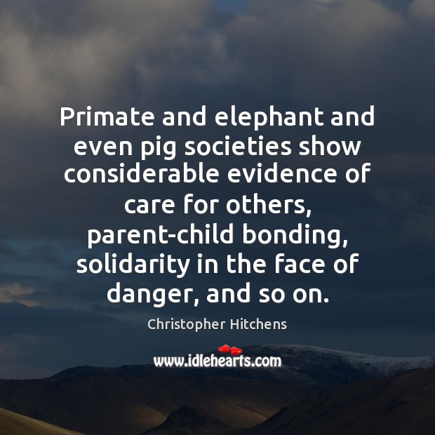 Primate and elephant and even pig societies show considerable evidence of care Image