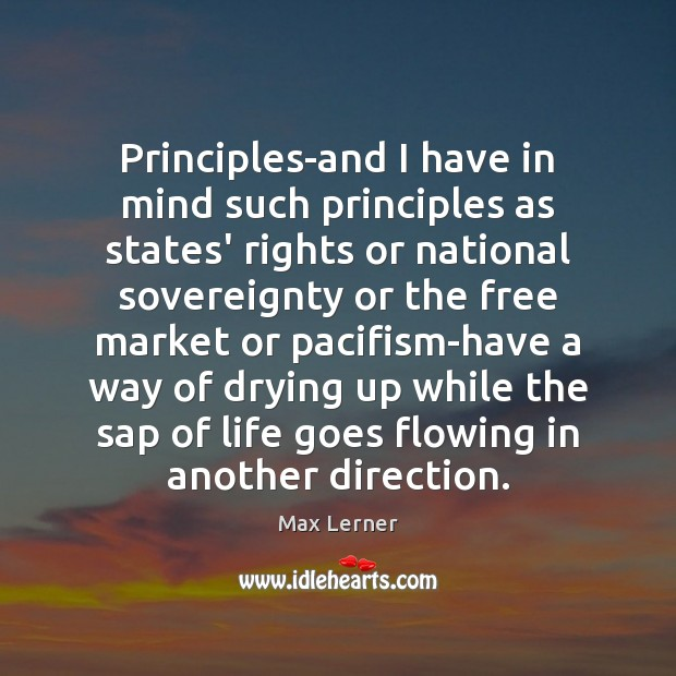 Principles-and I have in mind such principles as states' rights or national Max Lerner Picture Quote