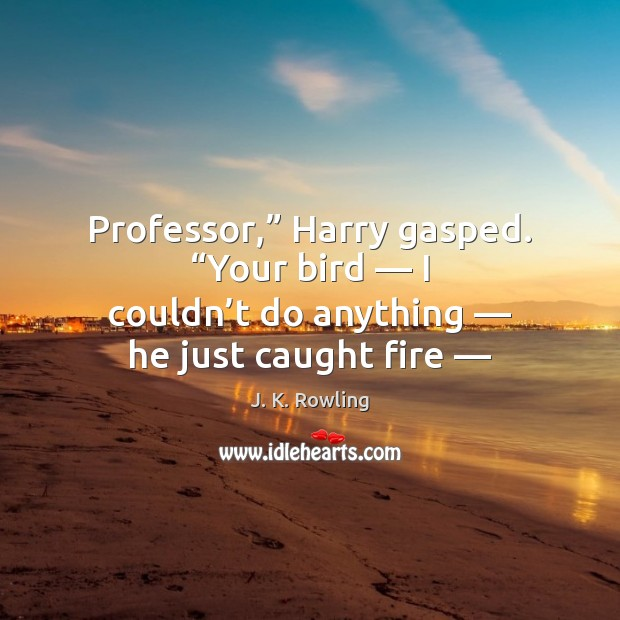 "Image, Professor,"" Harry gasped. ""Your bird — I couldn't do anything — he just"