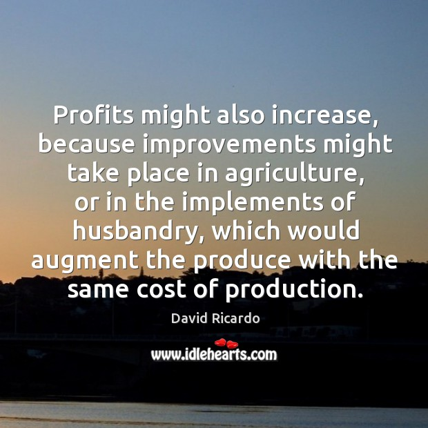 Profits might also increase, because improvements might take place in agriculture David Ricardo Picture Quote