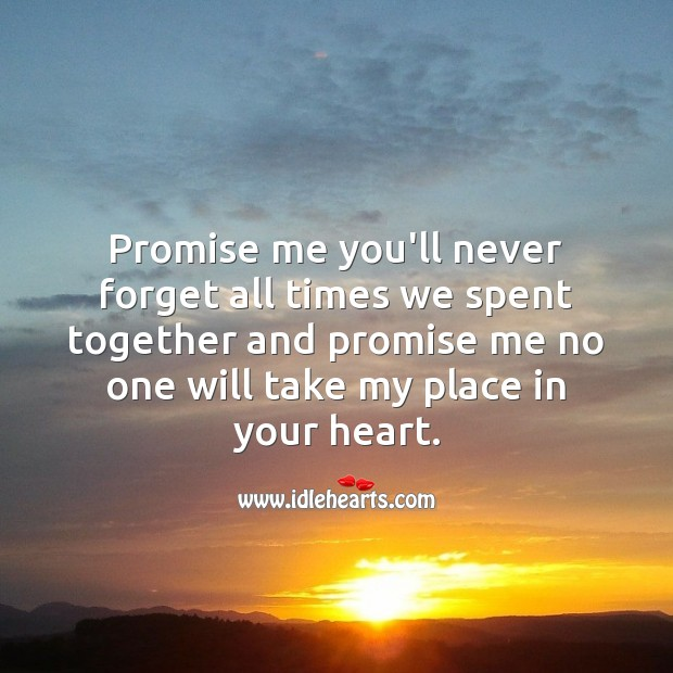 Promise me you'll never forget all times we spent together. Promise Quotes Image