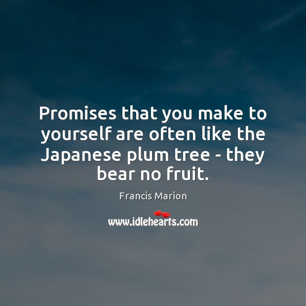 Promises that you make to yourself are often like the Japanese plum Image