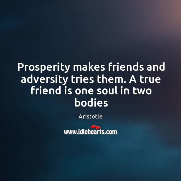 Prosperity makes friends and adversity tries them. A true friend is one soul in two bodies Image