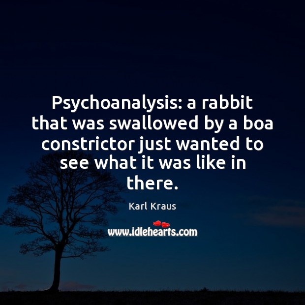 Psychoanalysis: a rabbit that was swallowed by a boa constrictor just wanted Karl Kraus Picture Quote