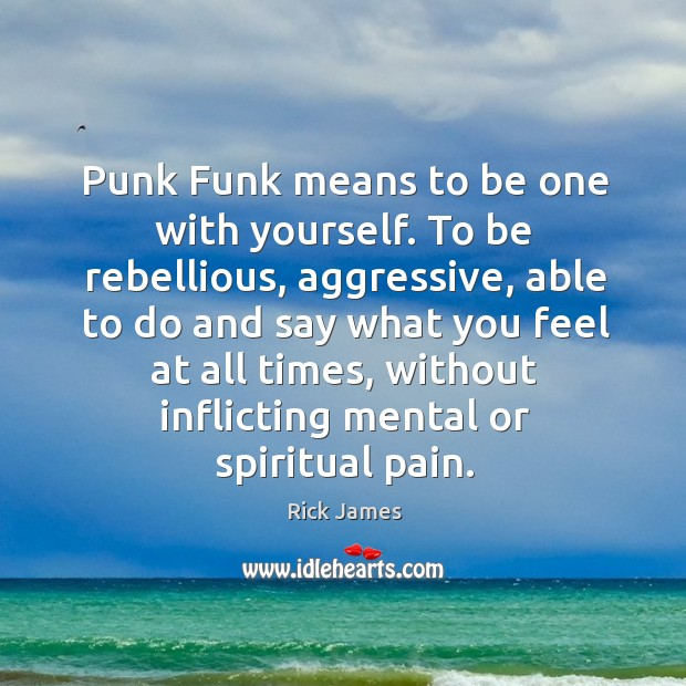 Punk Funk means to be one with yourself. To be rebellious, aggressive, Image