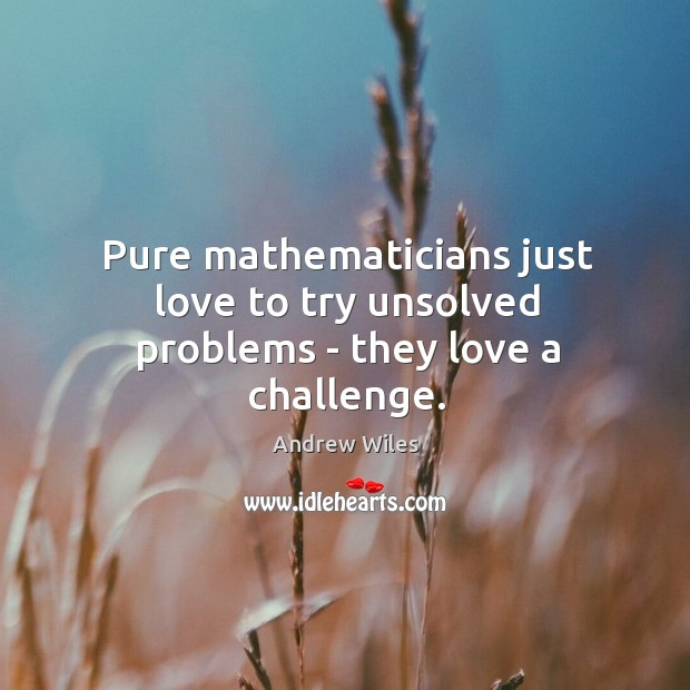 Pure mathematicians just love to try unsolved problems – they love a challenge. Image