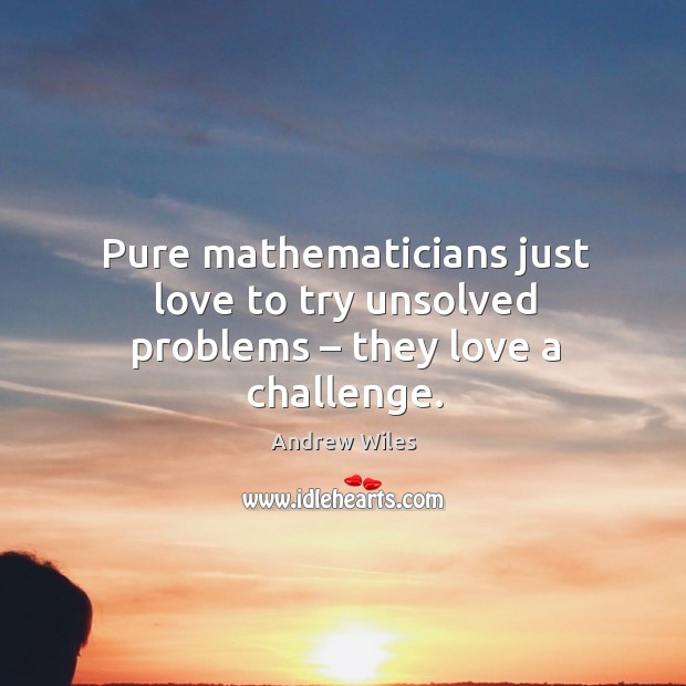 Pure mathematicians just love to try unsolved problems – they love a challenge. Andrew Wiles Picture Quote