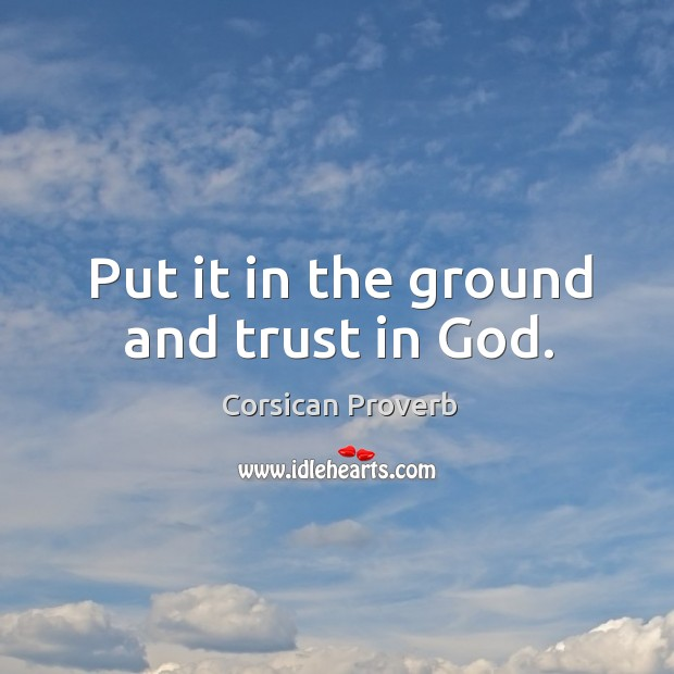 Image, Put it in the ground and trust in god.
