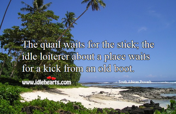The quail waits for the stick; the idle loiterer about a place waits for a kick from an old boot. Image