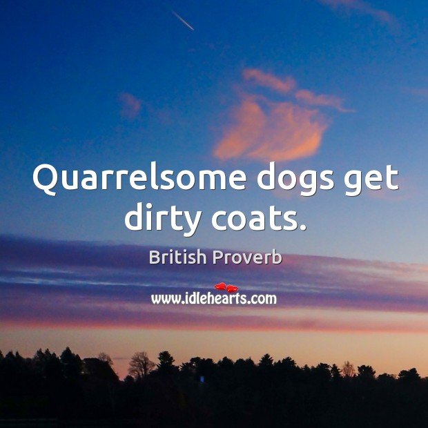 Image, Quarrelsome dogs get dirty coats.