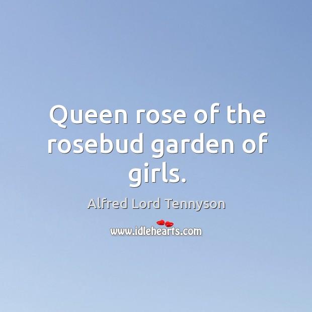 Image, Queen rose of the rosebud garden of girls.