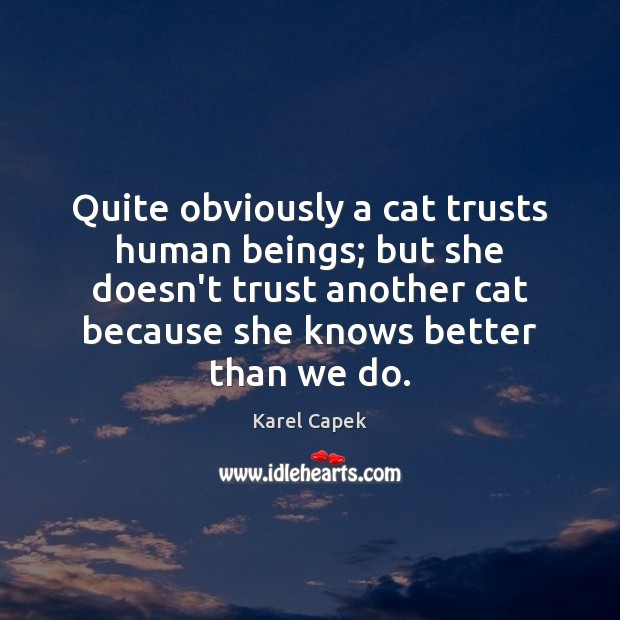 Quite obviously a cat trusts human beings; but she doesn't trust another Karel Capek Picture Quote