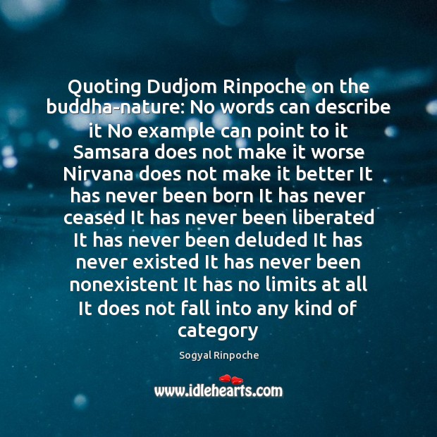 Quoting Dudjom Rinpoche on the buddha-nature: No words can describe it No Sogyal Rinpoche Picture Quote