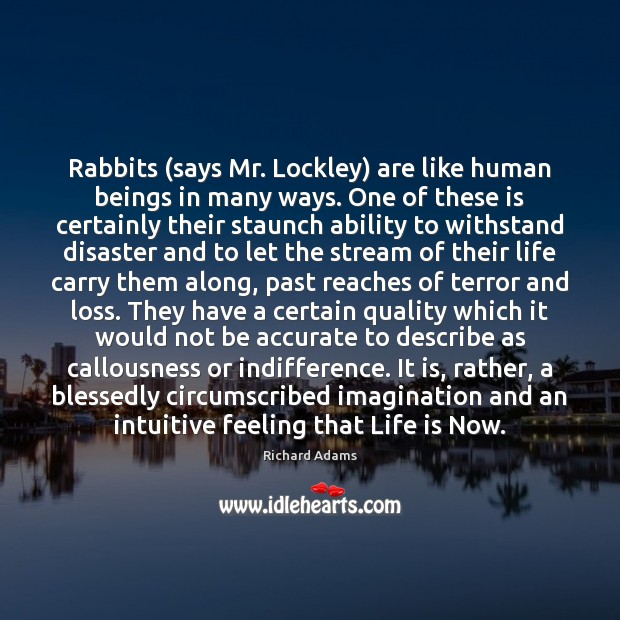 Rabbits (says Mr. Lockley) are like human beings in many ways. One Image