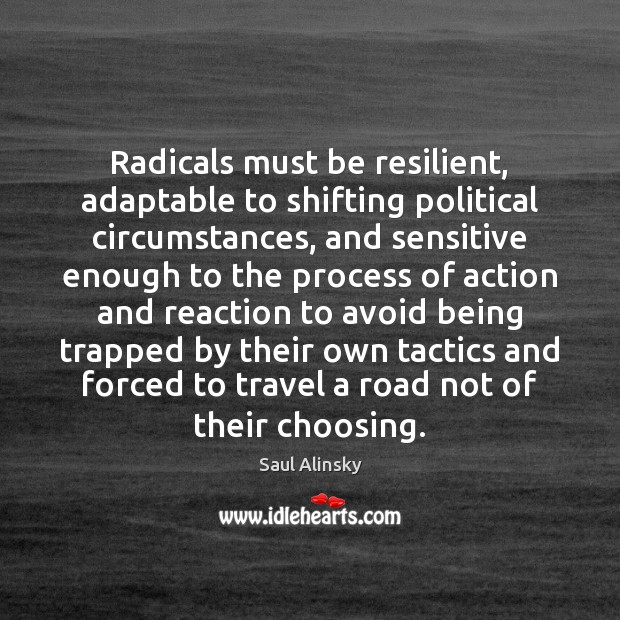 Radicals must be resilient, adaptable to shifting political circumstances, and sensitive enough Saul Alinsky Picture Quote