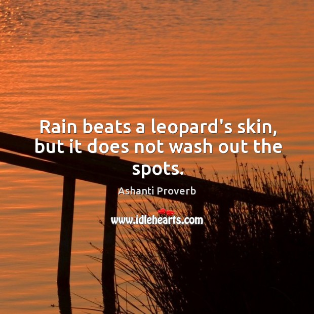 Rain beats a leopard's skin, but it does not wash out the spots. Ashanti Proverbs Image